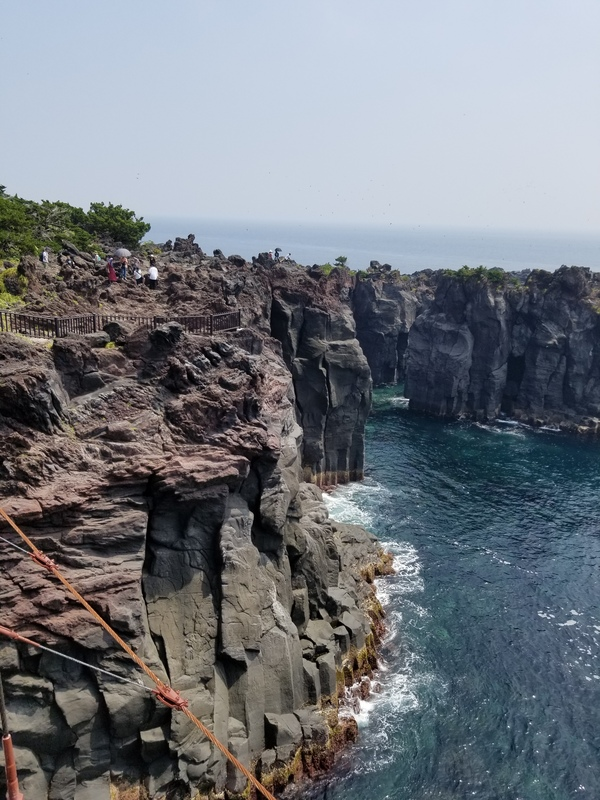 城ケ崎海岸2[1].jpg